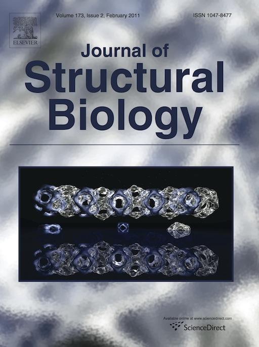 JSB_Cover